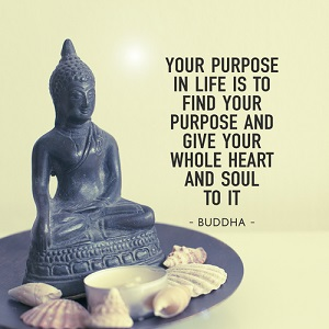 find-your-purpose-quote-buddha-dreams-to-action-com-au